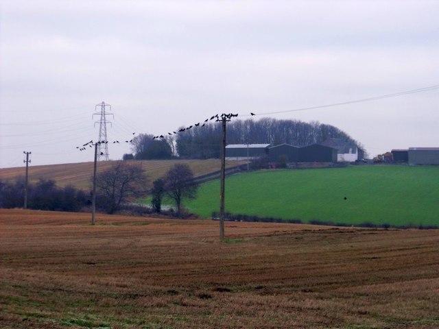 Fields of stubble