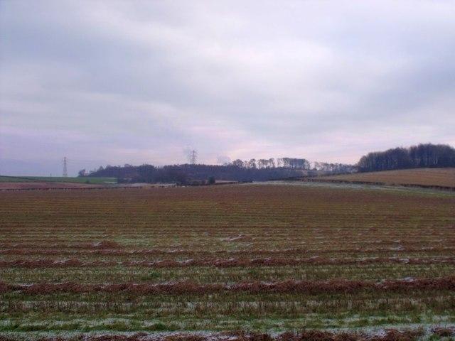 Gartwhinnie, fields