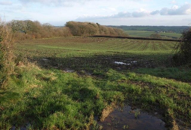 Field near Penson Cross