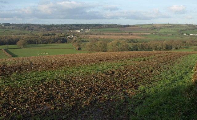 Towards Luxton Moor