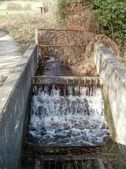 Stream enters a sink, Glyn-gwyn Farm, Trethomas