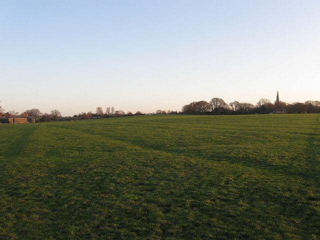 Jenkins Field (3)