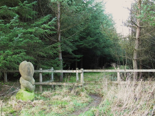 Wood sculpture by a path to Neddy's Well