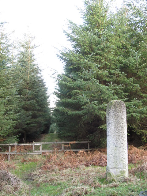 Wood sculpture and path to Neddy's Well