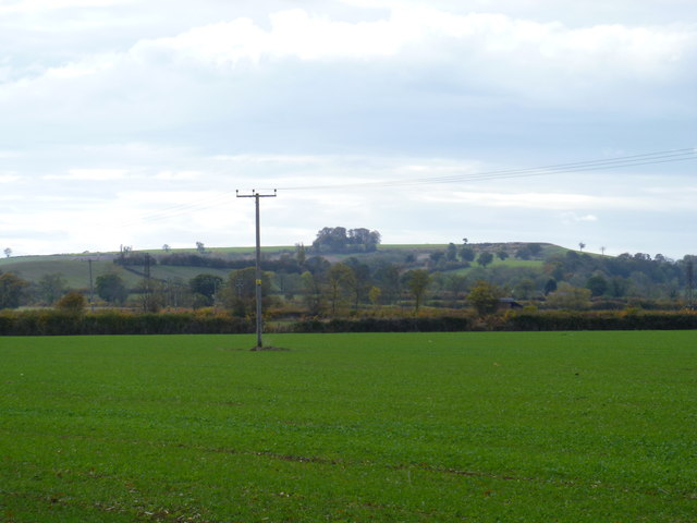 Highwall Spinney from n ear Upper Chelmscote