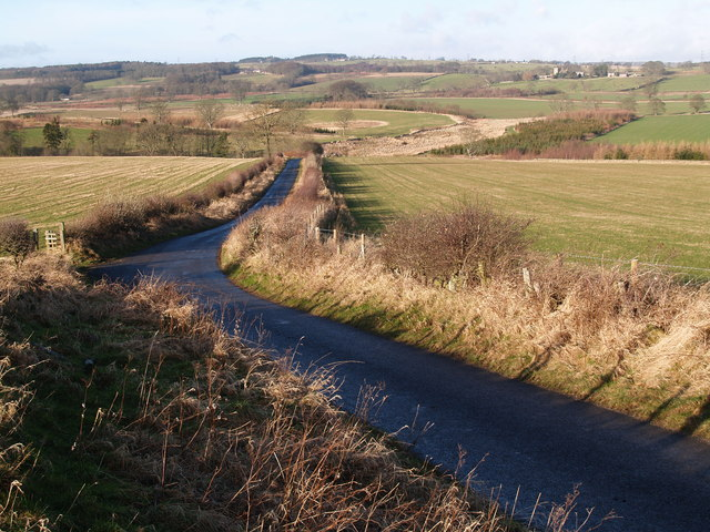 Lane between Aydon and Aydon Castle as it descends to Cor Burn