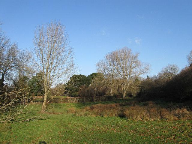 Dicker Field