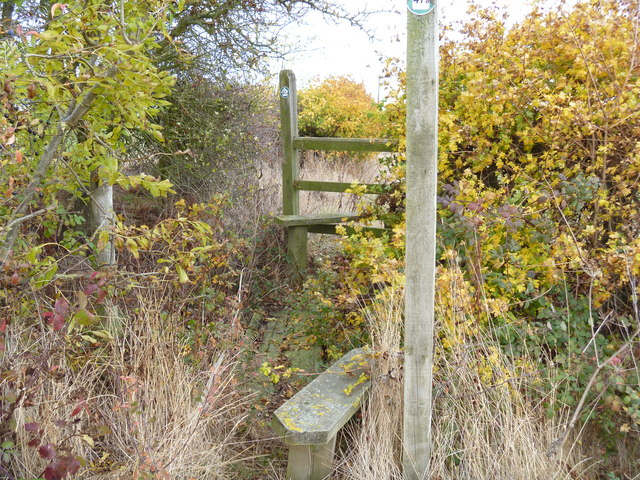 Ditch and hedge