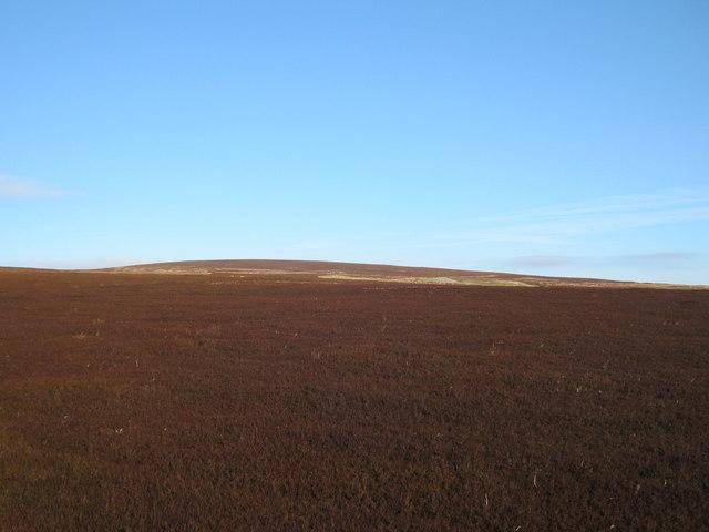 Low Moor above Langthwaite
