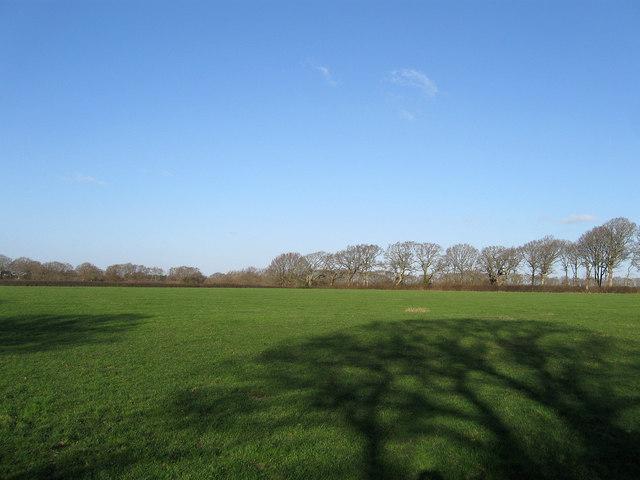 Lower Field