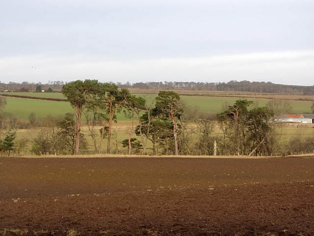 Newly ploughed field