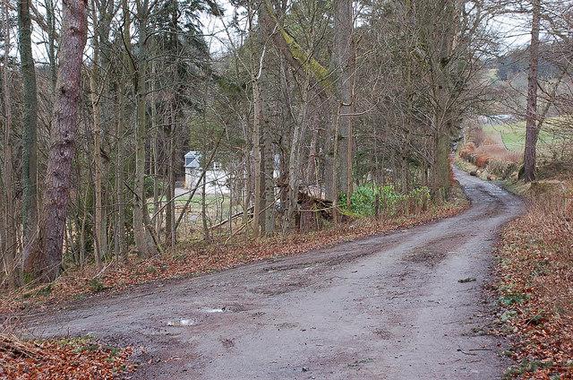 Track junction, Glenormiston Estate
