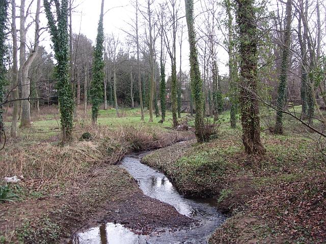 Woodland, Winton Estate