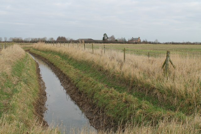 Drain with The Woodlands in distance