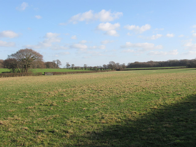 Upper Meadow/Three Acres/Upper Field