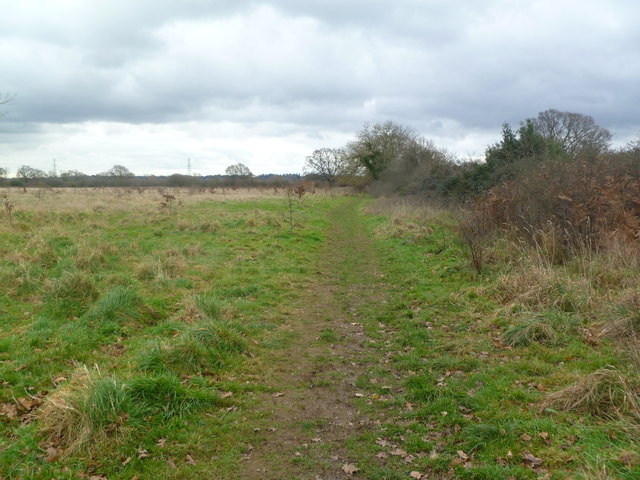 Sturminster Marshall, Wareham Forest Way