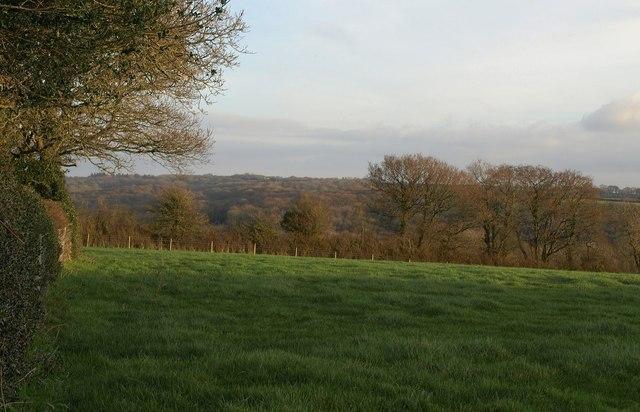 Field near Lake Farm