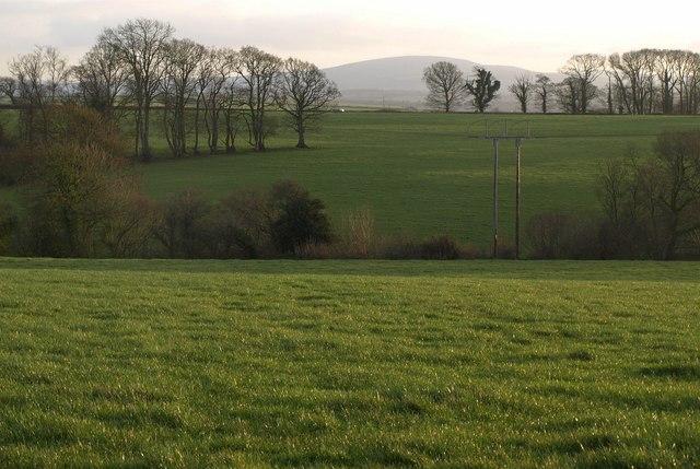 Fields near Honeychurch Cross