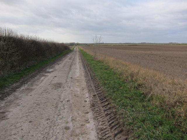 Road to Whiteplot Farm