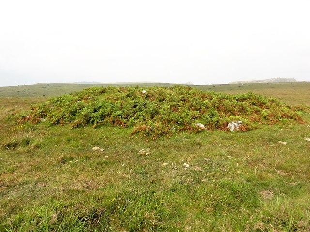 A Tumulus on Craddock Moor