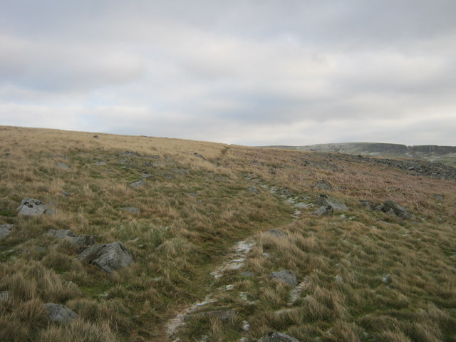 Bridleway on Low Moor to Rowantree Fold
