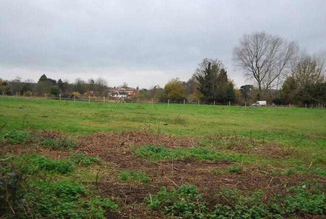 Field by Hayle Place