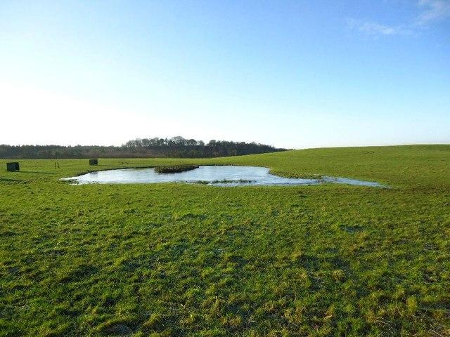 Blackhill, duck pond