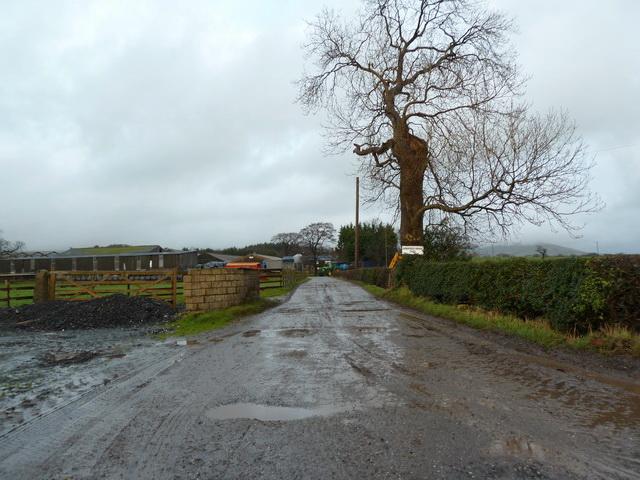 Road to Longfield House Farm