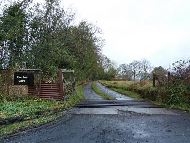 Road to Nan King's Farm