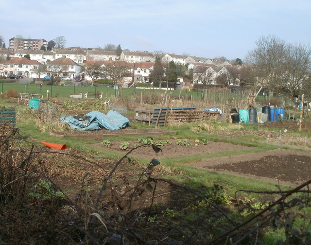 Bassaleg Allotments
