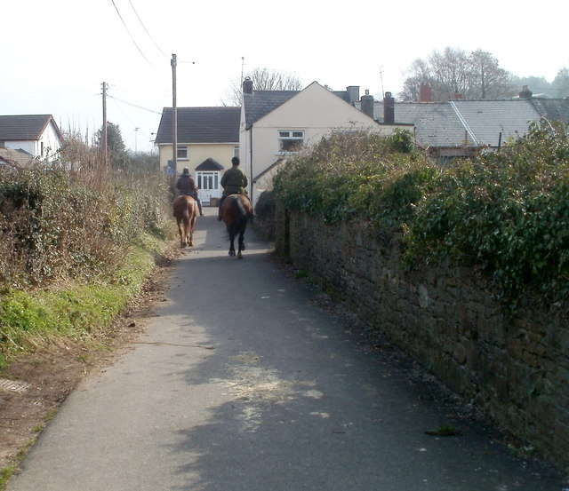 Two horses in Cowshed Lane, Bassaleg
