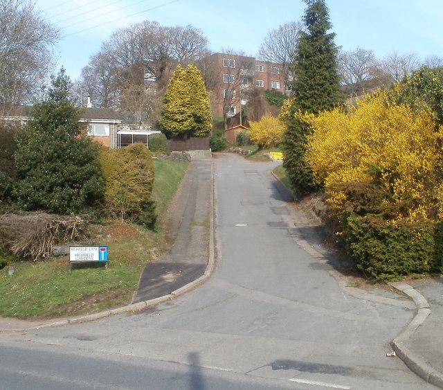 Highfield Lane, Bassaleg