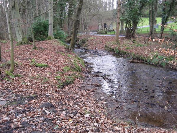 Langley Burn near Langley Castle