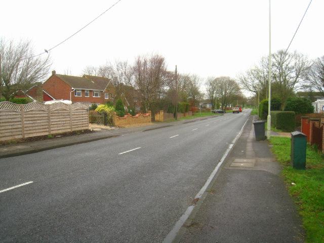 Buckskin Lane