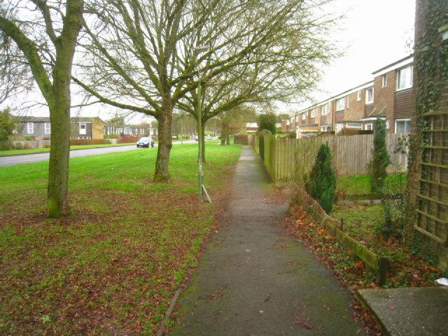 Path along Buckskin Lane