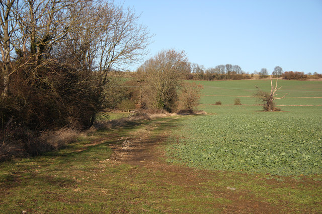 Track at West Keal