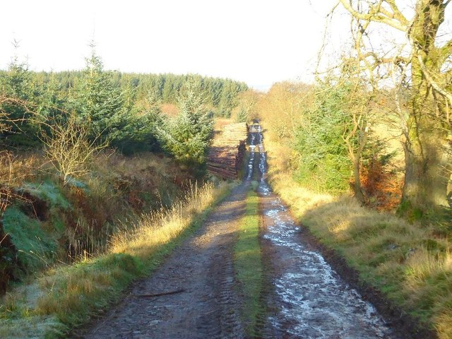 Auchengean, track to Greenrig