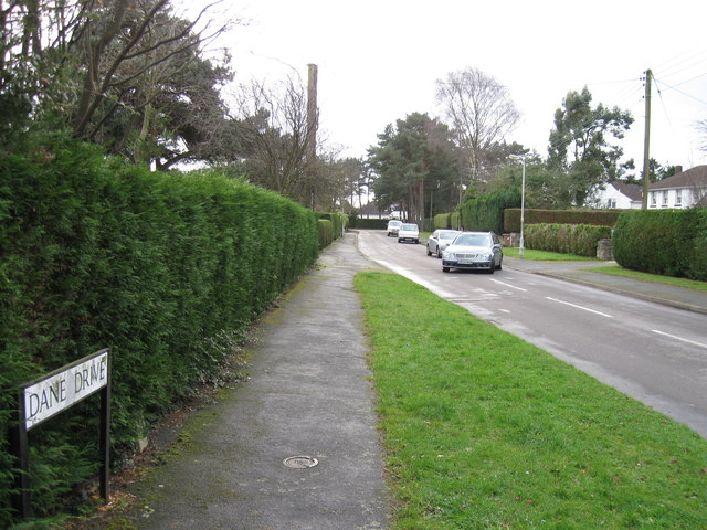 Dane Drive, Ferndown