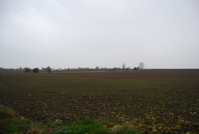 Farmland south of Chestfield