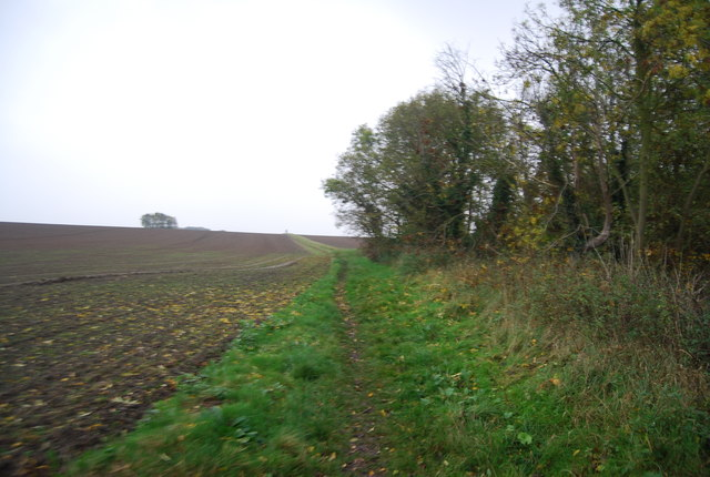 Footpath by Rabbit Shaw