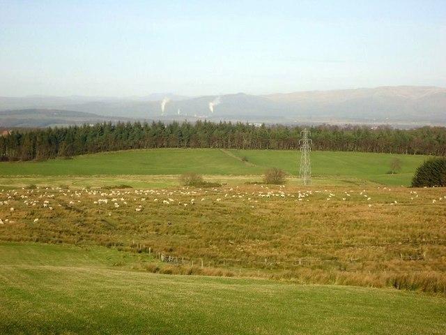 Auchengean, grazing [2]