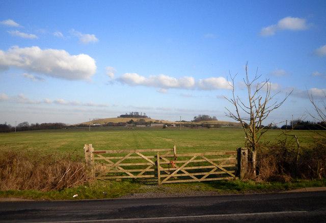 Field Gates and Wittenham Clumps