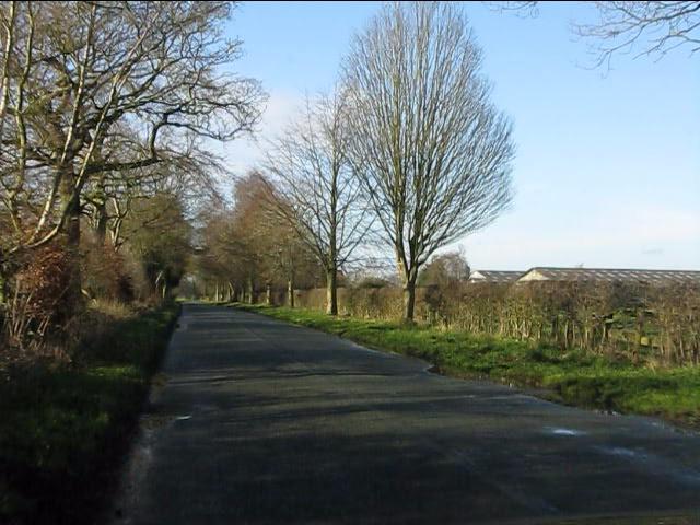 Forty Acre Lane near Beechwood Farm