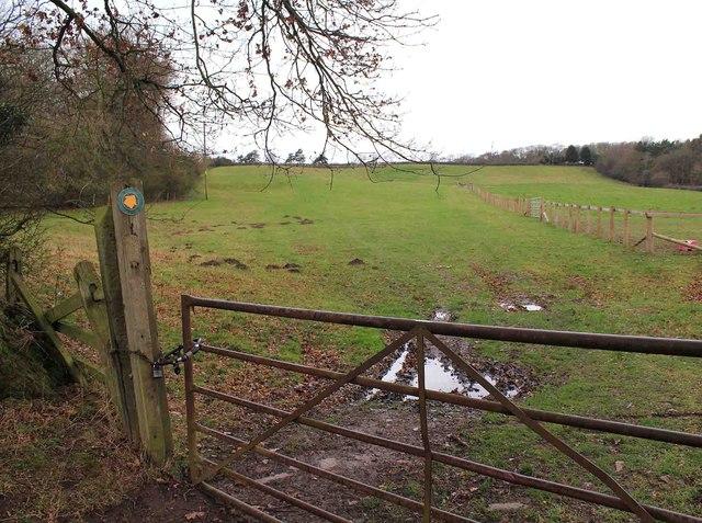 Footpath by Thornhill Wood