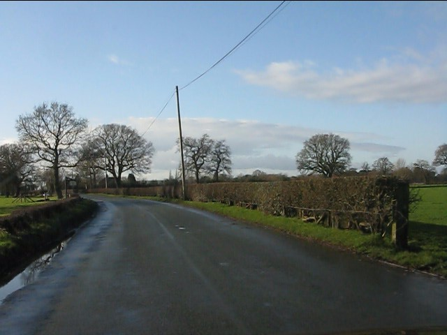 Forty Acre Lane