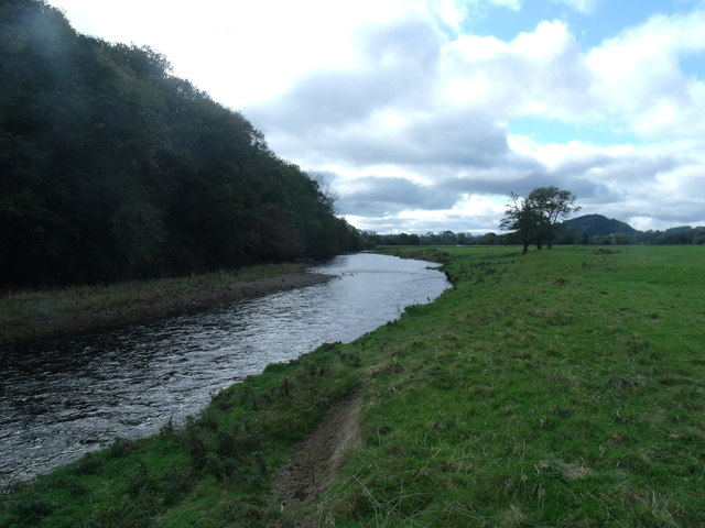 The River Vyrnwy from Bron-y-Main