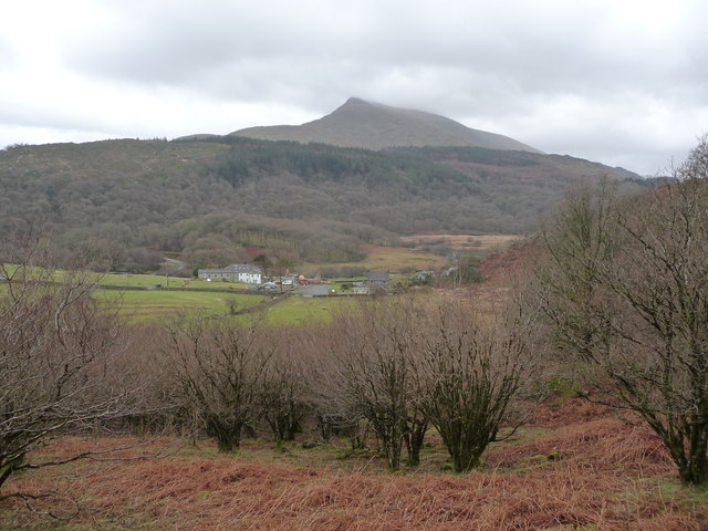 View from woodland path near Capel Curig