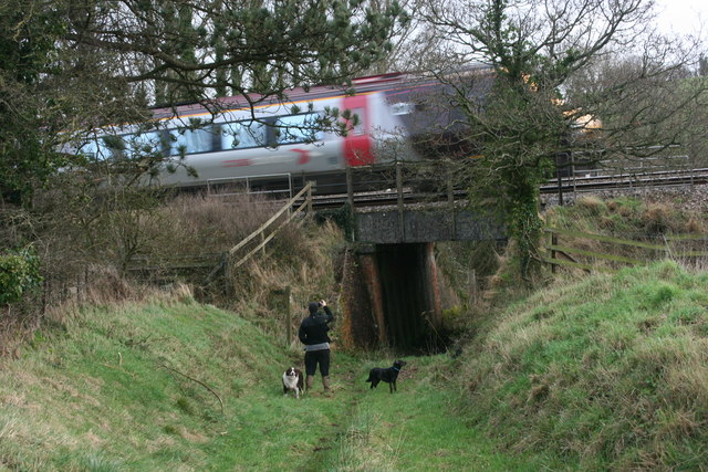 Railway Underpass at Sampford Arundel