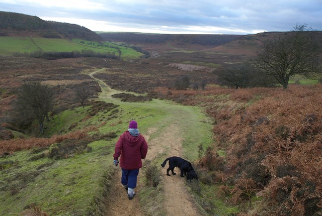 Path down the Hole of Horcum