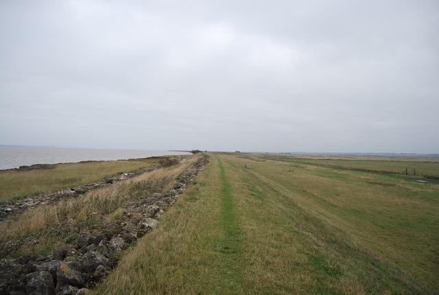 Path , estuary and marsh